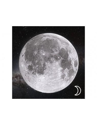 Magnes 3D - Księżyc